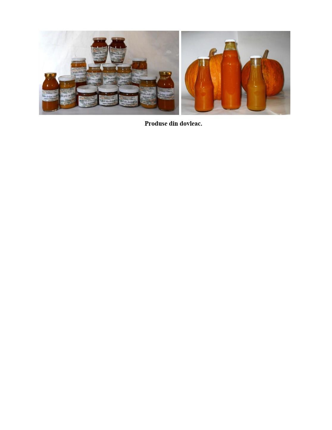 Elaborarea tehnologiei de fabricare a produselor alimentare şi ingredientelor prin procesarea complexă a dovleacului.