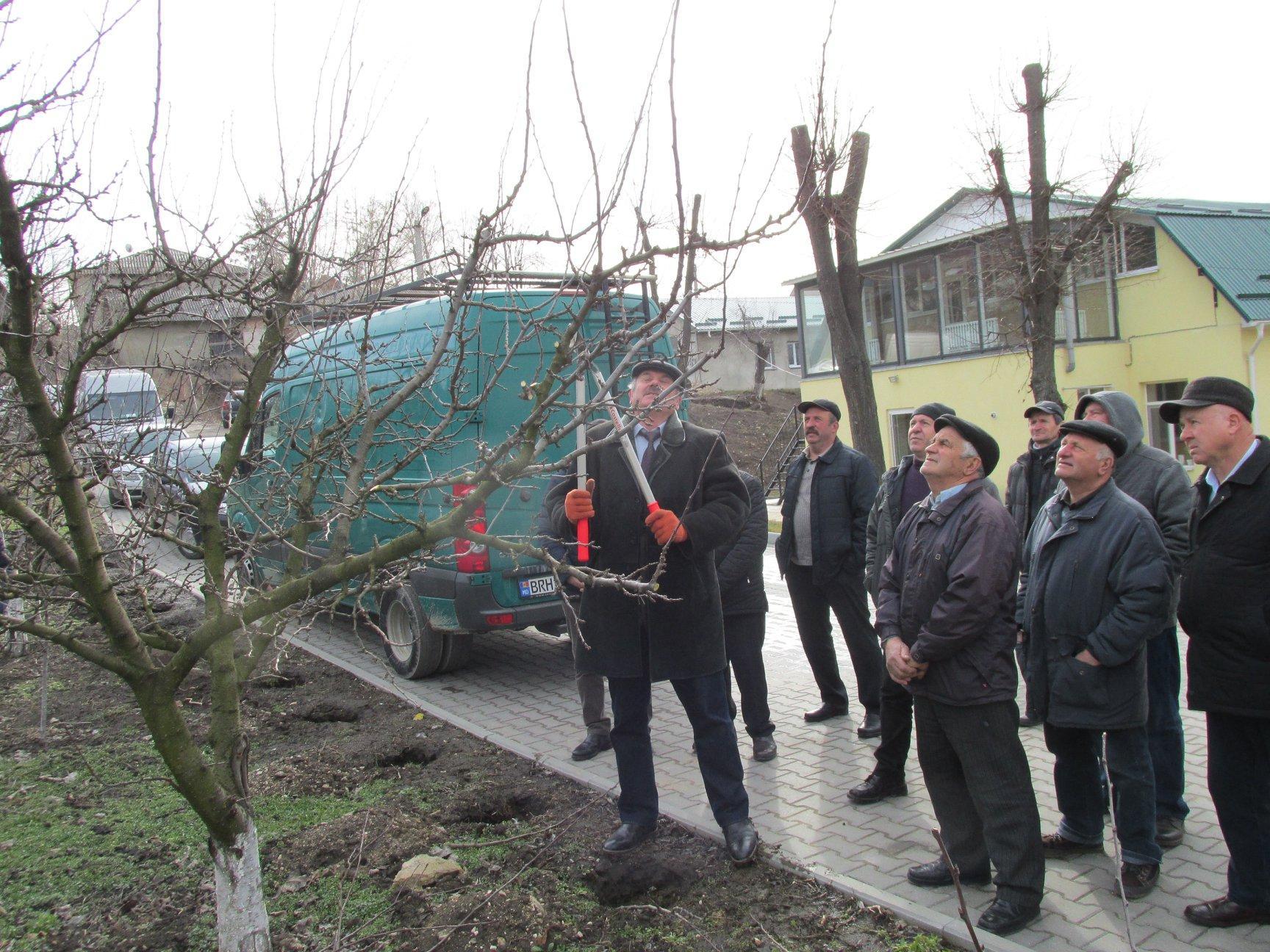 Seminar de instruire a producătorilor agricoli (Raionul Сălărași)