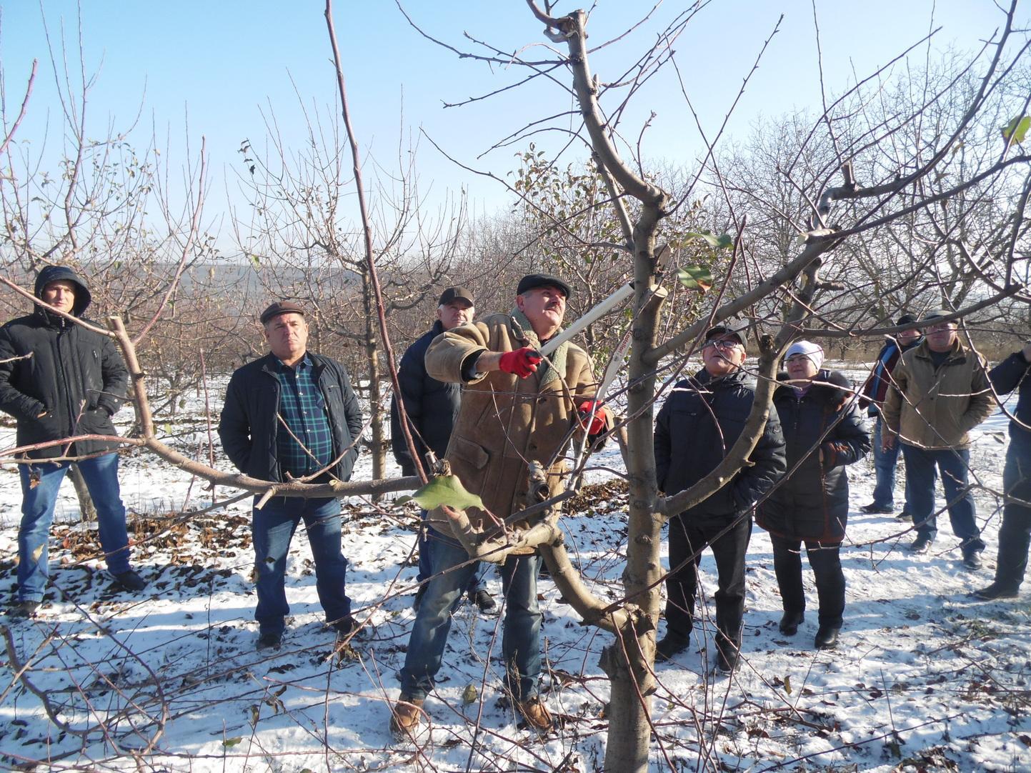 Seminar informațional-practic cu producătorii de fructe (RAIONUL FLOREȘTI)