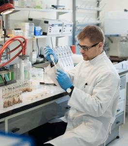 Testarea clonelor de vița de vie