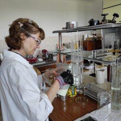 Pregătirea mediilor nutritive și inocularea cu izolatele
